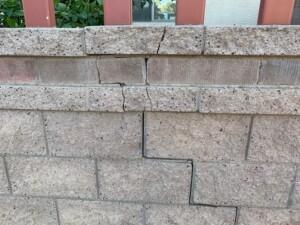 retaining wall damage from sissoo tree
